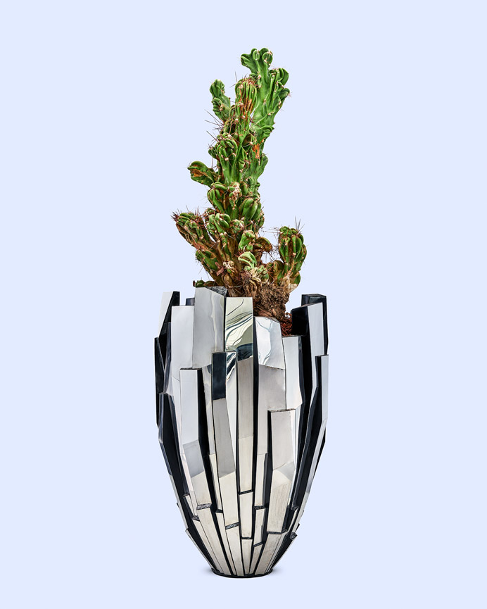 Fuga steel mirror and eggshell vase met cereus peruvianus monstrose